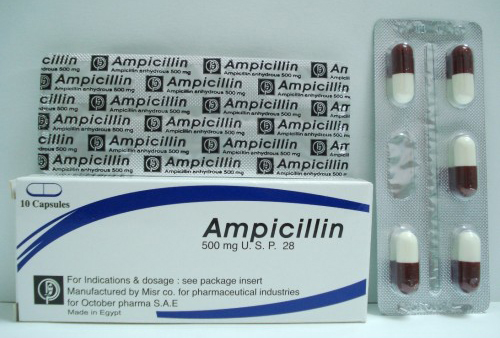 أمبيسيلين كبسولات مضاد حيوي واسع المجال Ampicillin Capsules