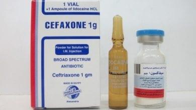 سيفاكسون أمبولات حقن مضاد حيوى واسع المجال Cefaxone Ampules