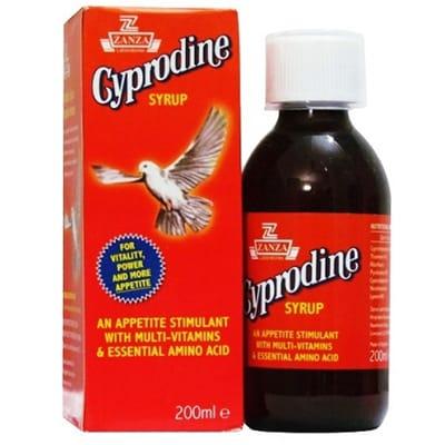 سيبرودين شراب Cyprodine Syrup